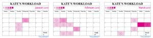 kate Middleton Duchess of Cambridge work engagements workload 2017 January February March