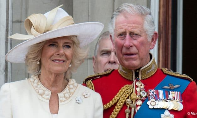 A new biography brings the 'blurry figure' of Prince Charles into focus