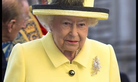 The Australian Wattle Royal Brooch